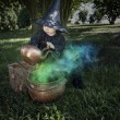 Little halloween witch with couldron outdoors — Stock Photo #32376039