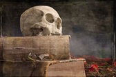 Old skull on old book — Stock Photo