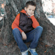 Stock Photo: Boy seated against tree