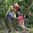 A group of children playing on a trunk  — Foto Stock