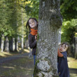 Two little girl looking from behind a tree — Stock Photo #34724587