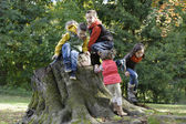 A group of children playing on a trunk — Stock Photo