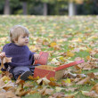 Little girl playing with a suitcase and autumn leaves — Foto Stock