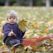 Little girl playing with a suitcase and autumn leaves — Stock Photo #35733243