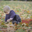 Little girl playing with a suitcase and autumn leaves — Stock Photo