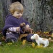 Little toddler in an autumn park — Stock Photo #35733727