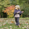 Little toddler in an autumn park — Stockfoto
