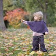 Little toddler in an autumn park — Stock Photo #35733945