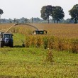 Stock Photo: Harvester, tractor