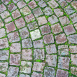 Cobblestone grass brick road — Stock Photo #15767795