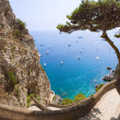 Amazing sea view from Capri mountains, Italy — Stock Photo #36039491