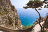 Amazing sea view from Capri mountains, Italy — Stock Photo