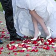 Bride and groom legs — Stock Photo #12274493