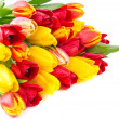 Bunch of tulips — Stock Photo #12301323