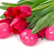 Eggs and tulips — Stock Photo