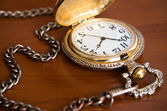 Pocket watch — Stock fotografie