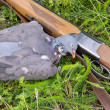 Pigeon and rifle on grass — Stock Photo #13368066