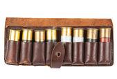 Cartridge — Stock Photo