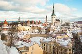 Tallinn in winter — Stock Photo