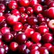 Stock Photo: Fresh cranberry for background