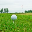 Golf ball on tee — Stock Photo #13690123