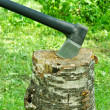 Ax in stump — Stock Photo