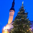 Christmas tree in Tallinn — Stock Photo