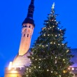 Royalty-Free Stock Photo: Christmas tree in Tallinn