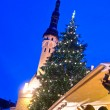 Christmas tree on City hall square in Tallinn — Stock Photo