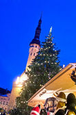 "Christmas tree on ""City hall"" square in Tallinn — Stok fotoğraf"