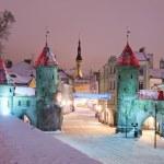 Nighttime old city of Tallinn — Stock Photo #19098139