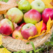 Apples in basket — Stock Photo #34717097