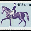 Bulgaria stamp with horseback riding — Stock Photo