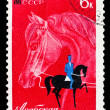Stock Photo: USSR stamp arabian horse