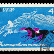 USSR stamp thoroughbred race horse — Stock Photo