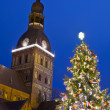 Christmas tree in Riga — Stock Photo