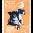 USSR stamp, space dogs Ugolek and Veterok — Stock Photo