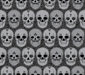 头骨 — 图库矢量图片