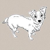 Vector dog — Stock Vector