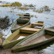 Three Boats — Stock Photo
