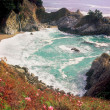 Постер, плакат: Julia Pfeiffer Burns State Park Big Sur CA
