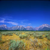 Mountain View Turnout ~ Grand Teton National Park — Стоковое фото