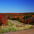 Autumn Crossroads - Superior National Forest — Stock Photo