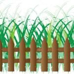 Grass of frame — Stock Vector