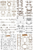 Vector set of calligraphic elements for design. Calligraphic vec — Stock Vector