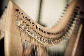 Harp — Stock Photo