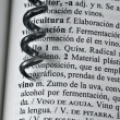 Stock Photo: Corkscrew