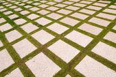 Rejilla y verde — Foto de Stock