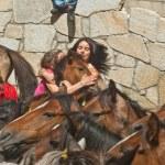 Wild horses — Stock Photo #33372221
