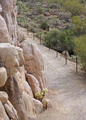 Desert Hiking Trail — Stock Photo